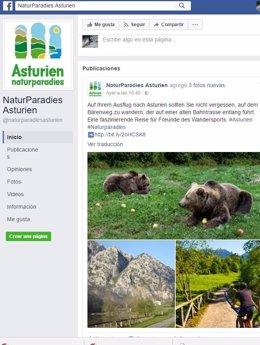 Perfil de la campaña de Facebook en alemán.