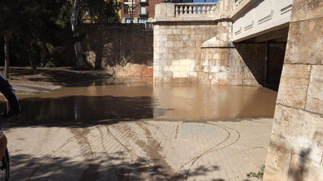La inundación llega hasta el parque Gulliver
