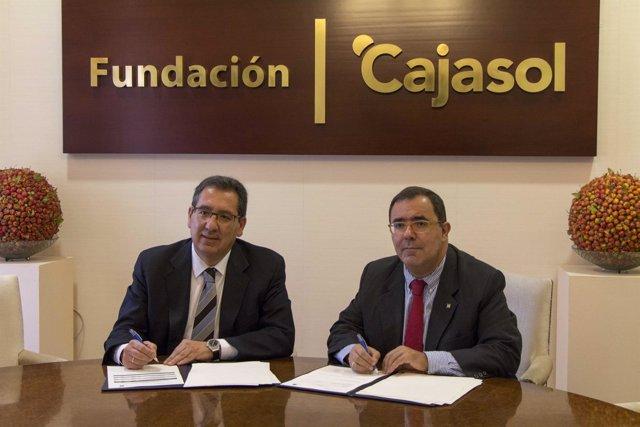 Convenio entre Fundación Cajasol y UPO