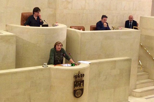 La consejera de Sanidad, María Luisa Real, en el Parlamento