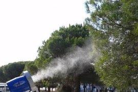 El Parlamento aprueba una PNL para reclamar a la Junta un papel activo contra los mosquitos en el Guadalhorce