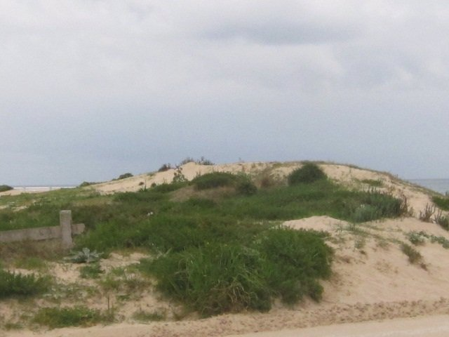 Dunas En La Playa De Berria, Santoña