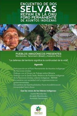 Pueblos indígenas amazónicos hablan ante la ONU