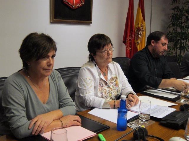 María José Beaumont, en el centro, en una comisión en el Parlamento