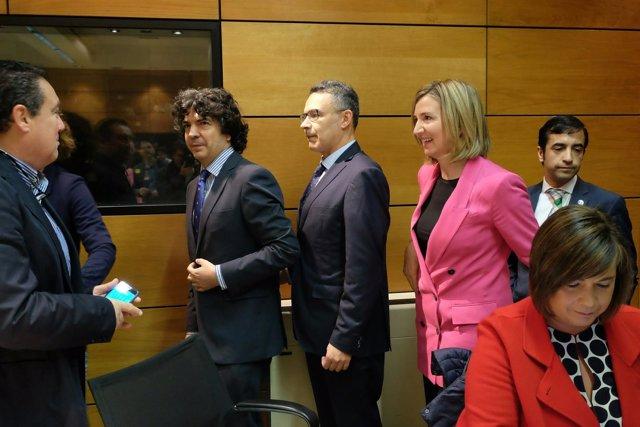 Madrid: Alicia García a su llegada a la reunión del Consejo Territorial