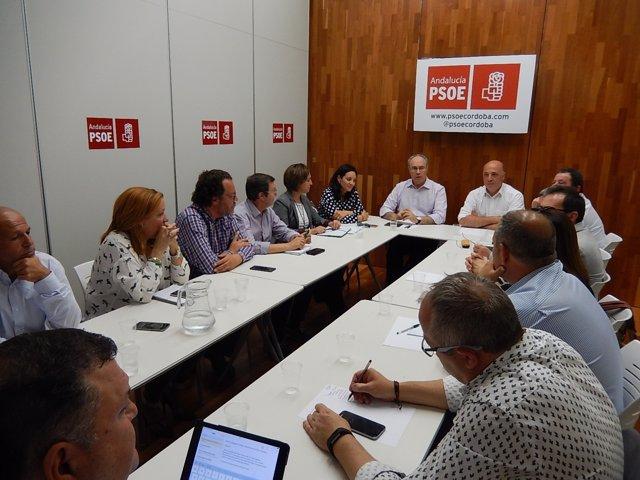 Durán y Ruiz (al fondo) presiden la reunión en la sede del PSOE