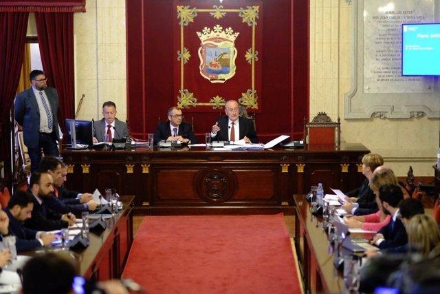 Pleno de Málaga. Febrero de 2017