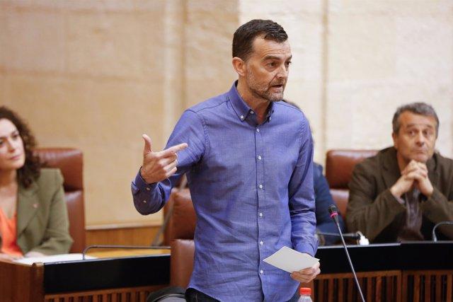 Antonio Maíllo, hoy ante el Pleno del Parlamento