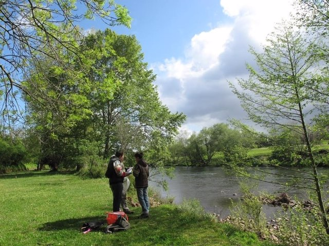 Proyecto Ríos. Naturaleza. Paisaje. ÞÁrbol. Cuenca fluvial. Cauce. Primavera