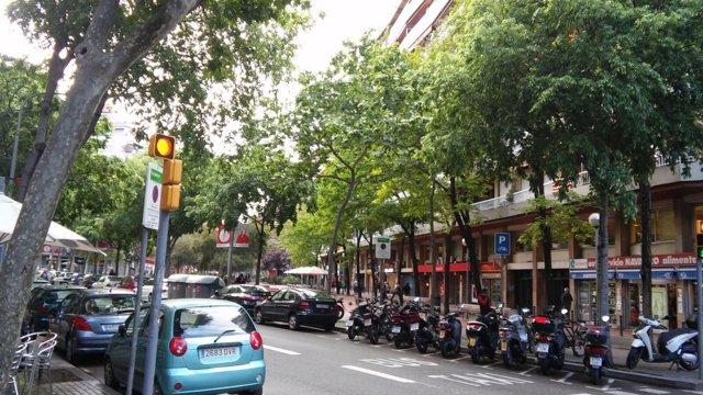 Avenida Mistral, Barcelona