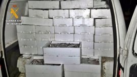"""Intervenidos en Almendralejo 500 kilos de pescado en una furgoneta sin """"mínimas condiciones"""" de conservación"""