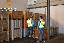 Detenidas dos personas e investigadas tres más por la sustracción de 32.000 kilos de naranja