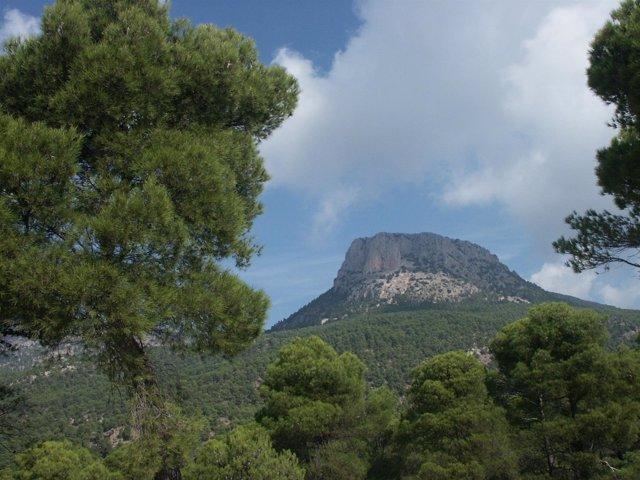 El Parque Regional de Sierra Espuña