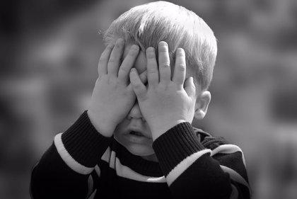 Ciudadanos pide al Gobierno aprobar la especialidad de Psiquiatría del Niño y Adolescente