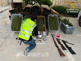 14 detenidos en La Romana (Alicante) por vender marihuana e inducir a trabajadores a suicidarse