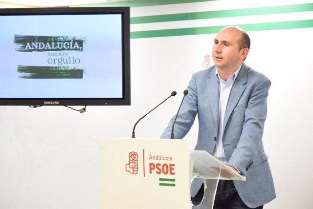 (Con Audio Y Fotos) El Psoe Califica El Anuncio De Moción De Censura De Podemos