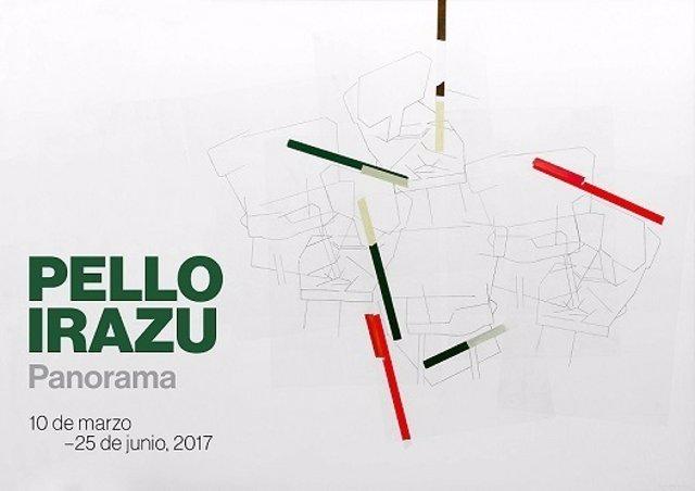Pello Irazu, Guggenheim