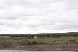 "PP: ""Page de engaña con las ayudas por ZEPA que concede a un grupo de agricultores a dedo"""