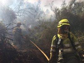 La Generalitat reunirá el 11 de mayo a los afectados por el incendio de Artana para detallar los trabajos