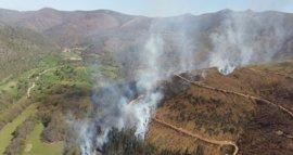 Foro lamenta el retraso en la elaboración de la nueva Estrategia de prevención de incendios forestales 2017-2020