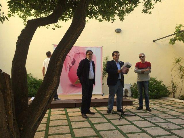 El Programa ALEX 2017 arrancará con el Ciclo de Poesía 'Piedra y Cielo'.