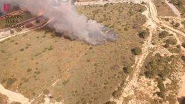 Declarado un incendio de nivel 1 en el Salobrar de Calvià