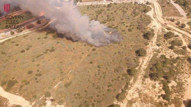 Incendio forestar en el Salobrar de Calvià