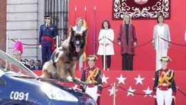 'Génova' y el PP de Madrid relativizan las encuestas pero destacan que Cifuentes sale reforzada