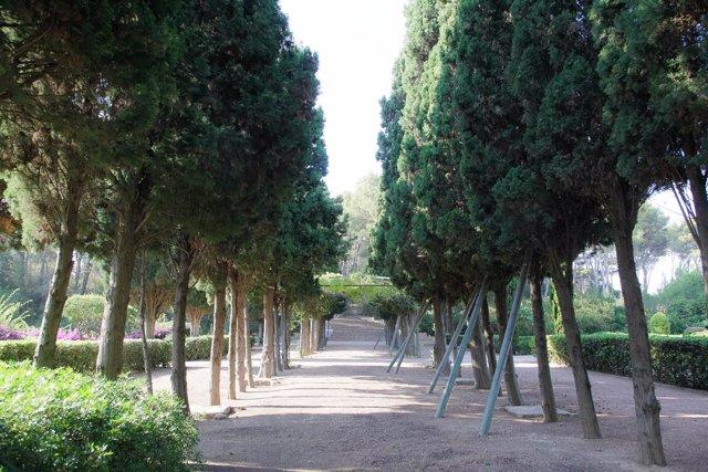 Vista general de los Jardines de Marivent en Palma