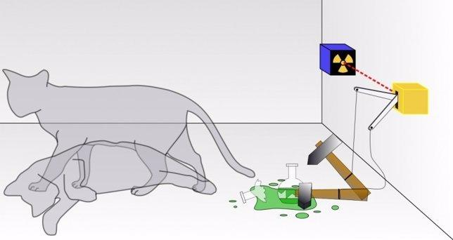 Descripción del gato de Schroedinger