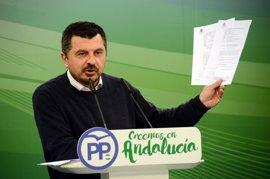"""PP-A critica el """"oportunismo político"""" de Podemos y defiende la """"estabilidad"""" en Andalucía"""