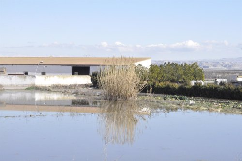 Granja afectada por la crecida del Ebro en la Ribera Alta de Zaragoza