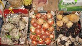 Detenido en Nombela por vender alimentos caducados y del Fondo de Alimentos de la UE