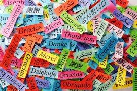 """Un 35% de los vascos afirma que """"habla y escribe"""" en inglés, tres puntos más que en 2011"""