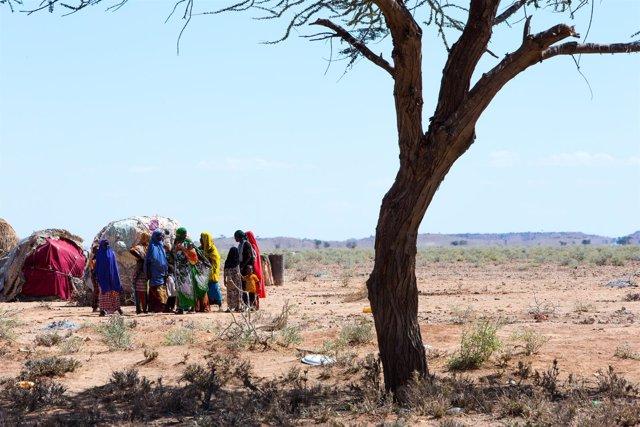 Personas afectadas por la sequía en Somalia