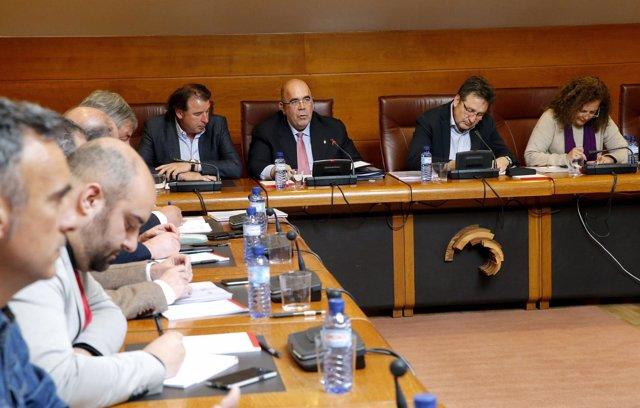 El consejero de Medio Rural, Pesca y Alimentación comparece en el Parlamento