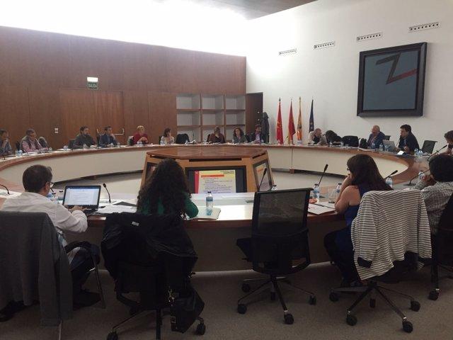 PalmaActiva participa en la Asamblea de REDEL