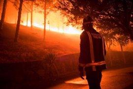 Condenan a tres años de cárcel al joven alemán que originó el incendio de La Palma