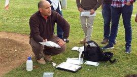 Los técnicos de parques y jardines de Palma se forman para combatir la 'Xylella fastidiosa'