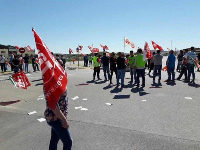 Huelga en mataderos de aves