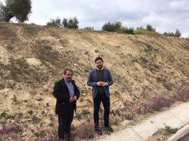 Inversión de 76.000 euros para restaurar paisajísticamente la carretera entre Bedmar y Garcíez