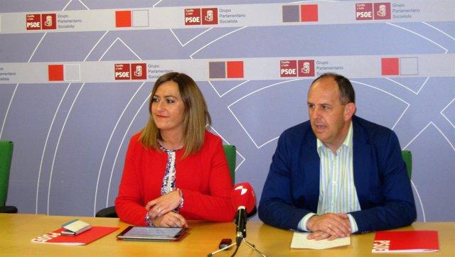 Virginia Barcones y José Luis Aceves, del Grupo Socialista en las Cortes
