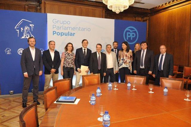 La ejecutiva de la FEMP con el Grupo Popular del Congreso