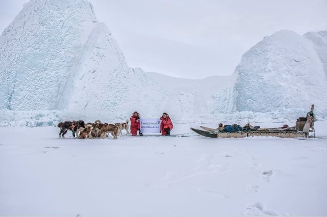 Desafío Artico 2017