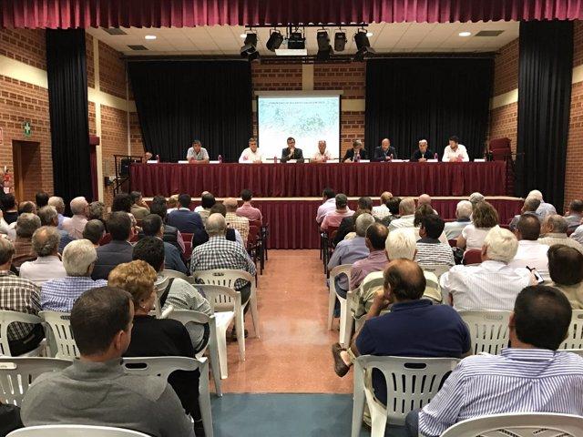 Nace la primera Comunidad de Regantes del Campo de Murcia