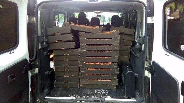 Cerca de 600 kilos interceptados por la Policia y donados al Banco de alimentos