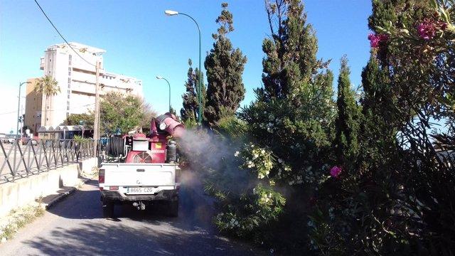 El Ayuntamiento De Málaga Informa: El Ayuntamiento Amplía La Fumigación En El En