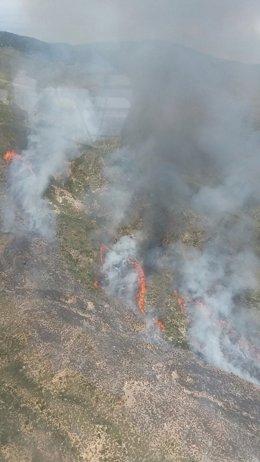 Frentes con llamas en una ladera de Sierra Alhamilla