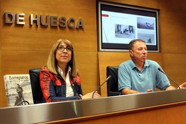 Presentación del libro 'Borregueros', hoy en la DPH