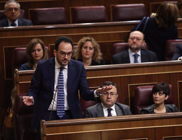 Antonio Hernando y diputados del PSOE